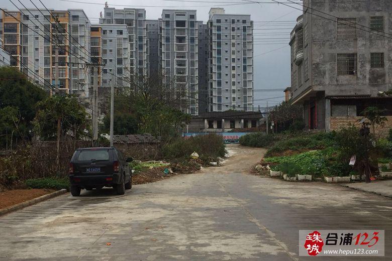 金桂华庭规划路 (2).jpg