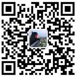 104332fdpn9wc77flgi3oa.jpg