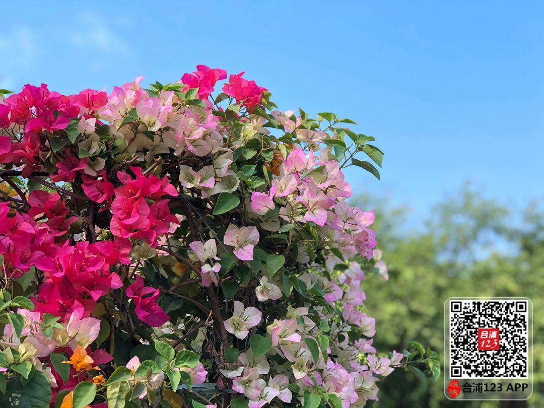 微信图片_20210221114108.jpg